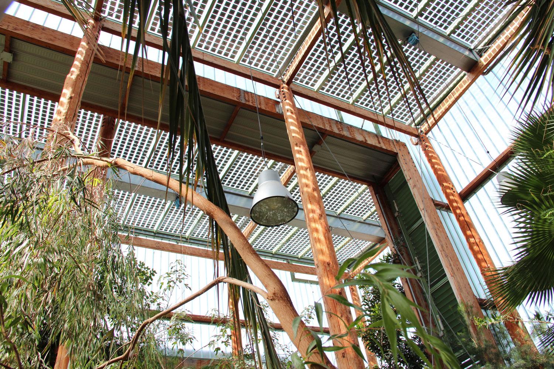 T tes t tes nature au jardin botanique de bordeaux un for Jardin botanique bordeaux