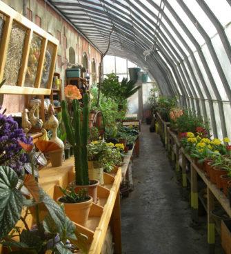 Jardiner en ville Bordeaux