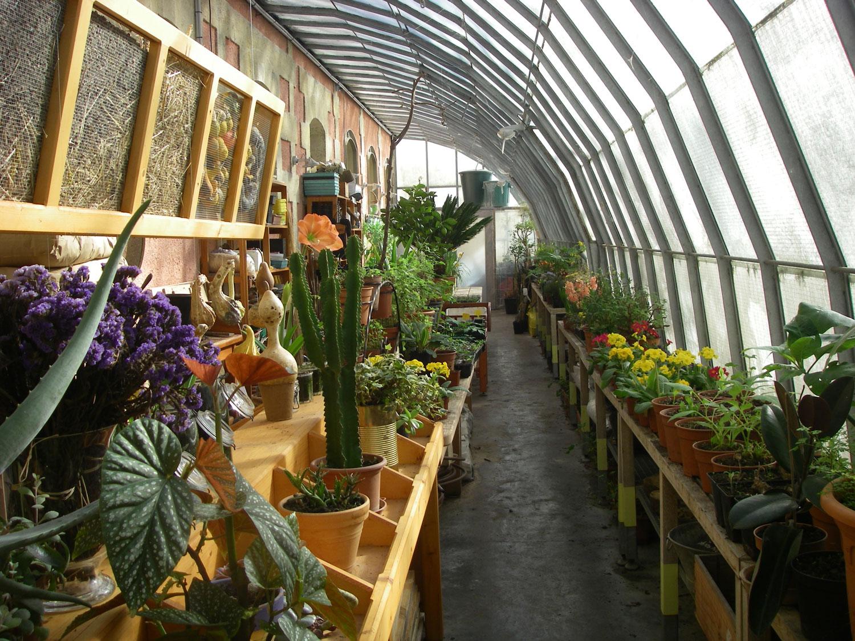 Jardiner en ville, c'est possible !