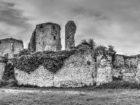 Le château de Blanquefort
