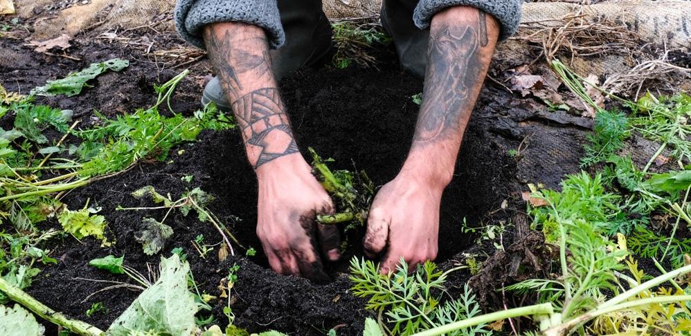 Consommer autrement – Terre d'Adèles cultive son jardin