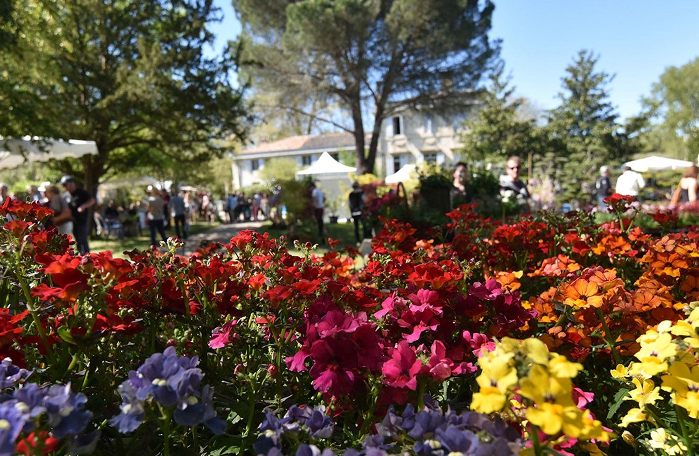Tauzia fête les jardins : rêve de passionnés et précieux rendez-vous saisonnier