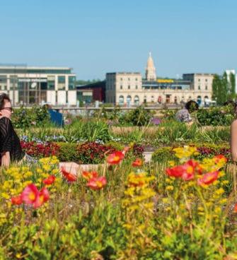 printemps à Bordeaux activités
