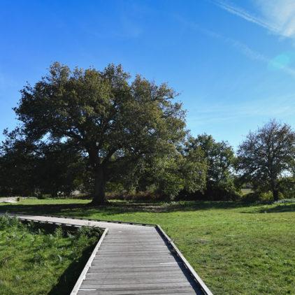 le parc du Ruisseau au Haillan