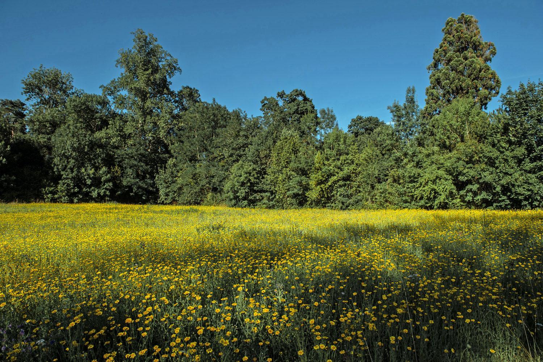 Le domaine de La Burthe, nature active !