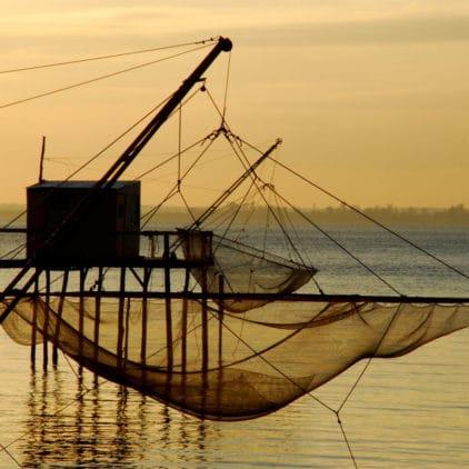 La Presqu'île d'Ambès