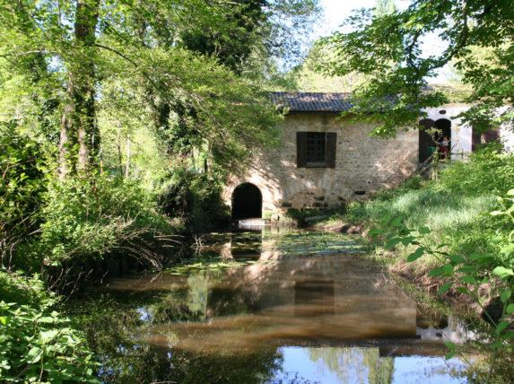 balade au bord de l'eau Bordeaux