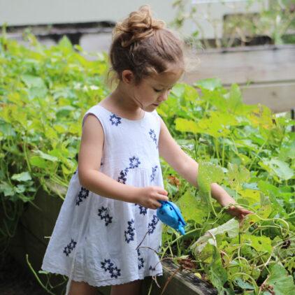 jardiner à Bordeaux