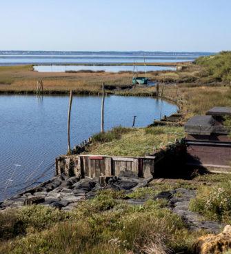 bassin d'arcachon activités