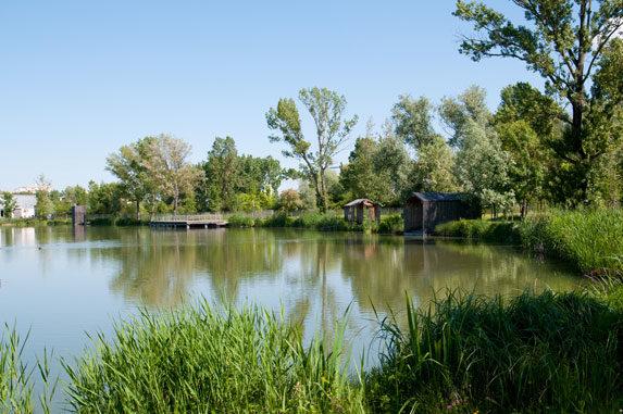 Parc des étangs - pêche à Floirac
