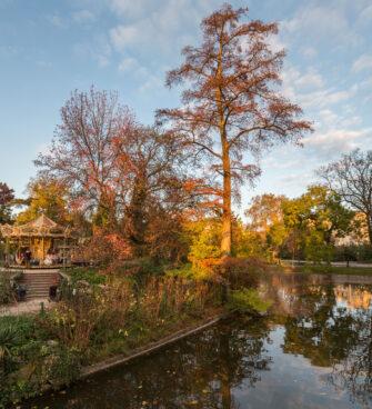 Agenda du week-end à Bordeaux - Jardin public en automne