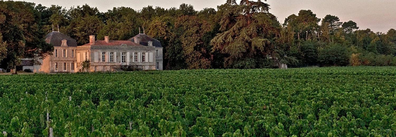 rando à bordeaux chateau et vignes