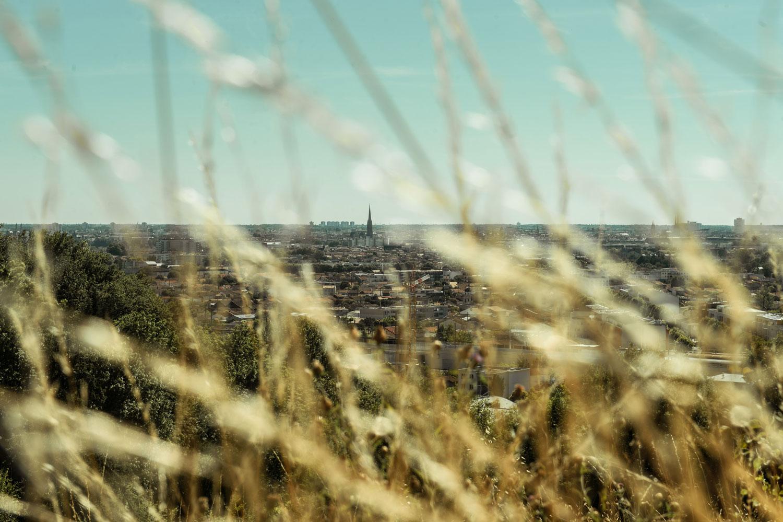 Balades nature autour de Bordeaux : tome 3, la rive droite.