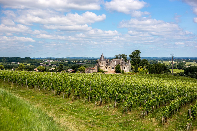 L'été au grand air – Au Royaume du Vin