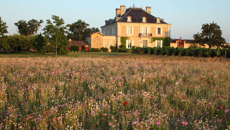 Que faire à Bordeaux en ce week-end vitaminé – 28, 29, 30 août 2020