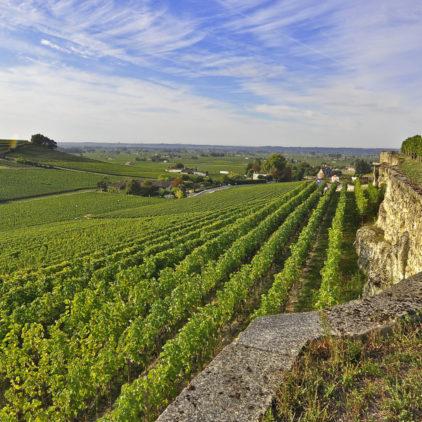 Coteaux Saint Emilion