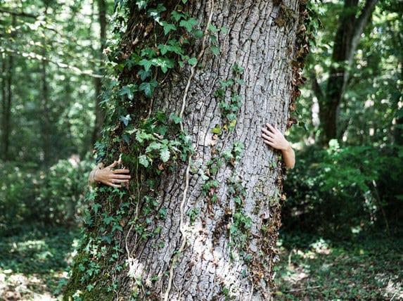 Bain de Forêt Graves