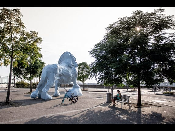 activités culturelles lion bleu stalingrad bordeaux confinement
