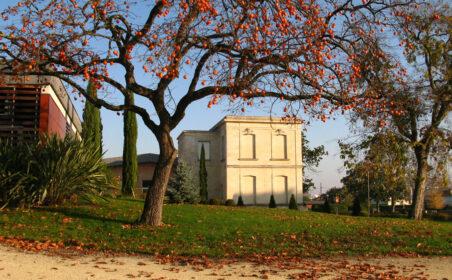 rando vignes Bordeaux