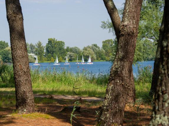 Bordeaux Lac Parc des Jalles