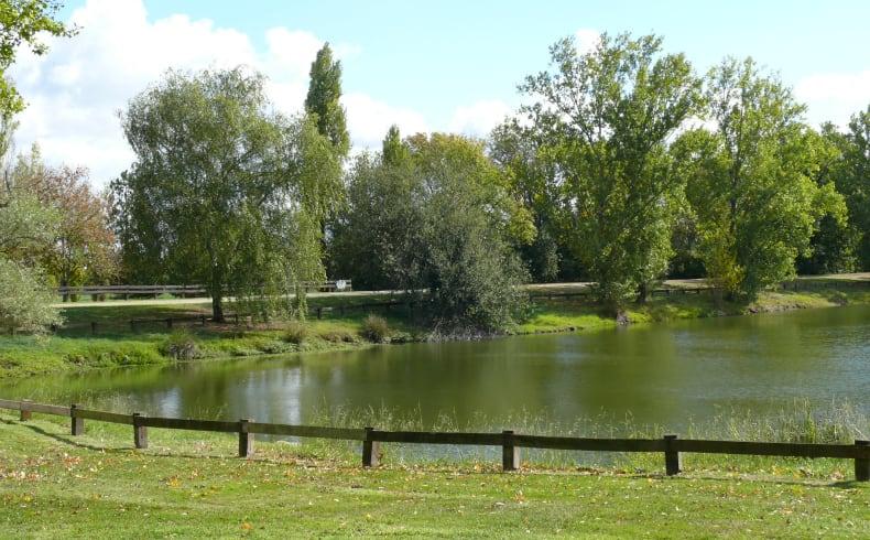 Le parc de Cantefrêne et ses 3 étangs pittoresques